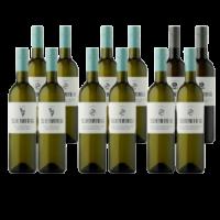 12er Gebietswein Paket 2020