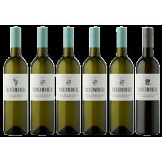 6er Gebietswein Paket 2020